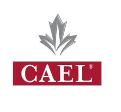 CAEL Computer Edition